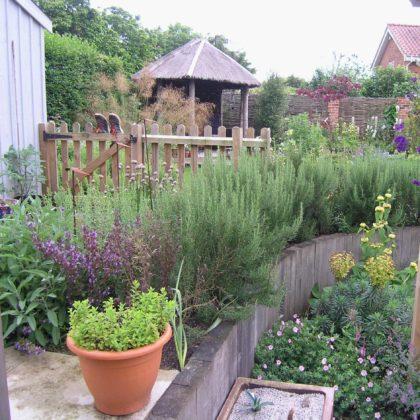 Cottage Style Planting - Alderton
