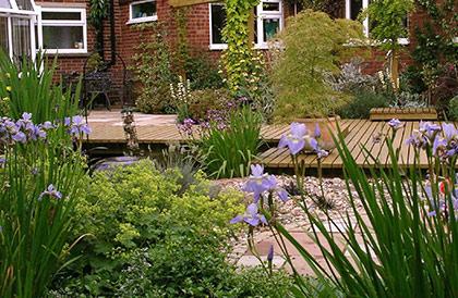 Garden Design Suffolk -ransom-road
